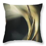 Astrophytum Cactus Prickles Throw Pillow