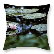 At Claude Monet's Water Garden 6 Throw Pillow