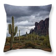 At The Base Of The Mountain Throw Pillow