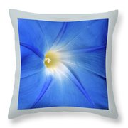 The Allure Throw Pillow