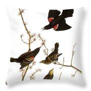 Audubon: Blackbird, (1827) Throw Pillow