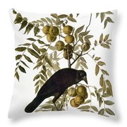 Audubon: Crow Throw Pillow