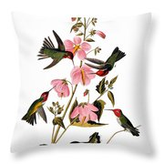 Audubon: Hummingbird Throw Pillow