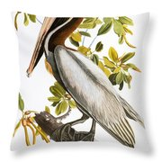 Audubon: Pelican Throw Pillow