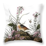 Audubon: Sparrow, (1827-38) Throw Pillow