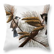 Audubon: Titmouse Throw Pillow