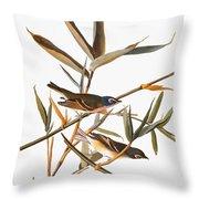 Audubon: Vireo Throw Pillow