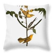 Audubon: Warbler, 1827-38 Throw Pillow