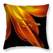 August Flame Glory Throw Pillow