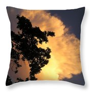 August Thunder Throw Pillow