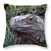 Australia - Kamodo Dragon Throw Pillow