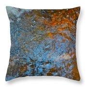 Autumn 2015 184 Throw Pillow