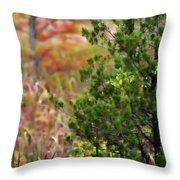 Autumn Colors 20 Throw Pillow