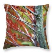 Autumn Colors 25 Throw Pillow