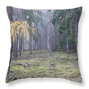 Autumn Coniferous Forest In The Morning Mist Throw Pillow
