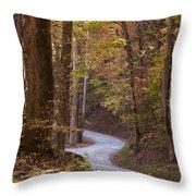Autumn Drive Throw Pillow