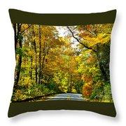 Autumn Drive No.2 Throw Pillow