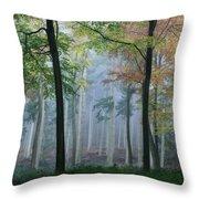 Autumn Frame Throw Pillow