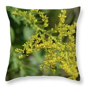 Autumn Goldenrod  Throw Pillow