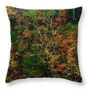Autumn Hillside Blue Ridge Parkway Throw Pillow