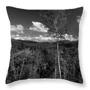 Autumn In The White Mountains Throw Pillow