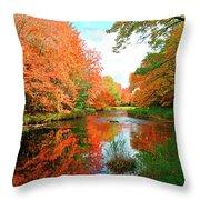 Autumn On The Mersey River, Kejimkujik National Park, Nova Scotia, Canada Throw Pillow