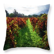 Autumn Vineyard In The Morning  Throw Pillow