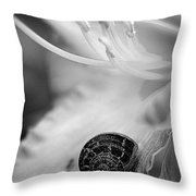 B And White Floral With Snail Throw Pillow