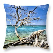 Back To The Sea Throw Pillow