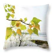 Backlit Poplar Leaves Throw Pillow