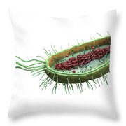 Bacteria Cross Section Throw Pillow