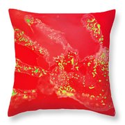 Bacteria Transferred From Hand Throw Pillow