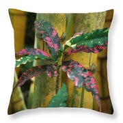 Bamboo Flower Throw Pillow