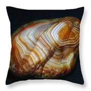 Banded Beauty Throw Pillow
