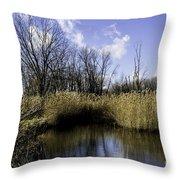 Banner Marsh Throw Pillow