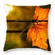 Barbed Autumn Throw Pillow