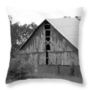 Barn In Kentucky No 70 Throw Pillow
