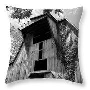 Barn In Kentucky No 66 Throw Pillow
