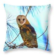 Barn Owl Beauty Throw Pillow