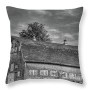 Ct. Barn Throw Pillow