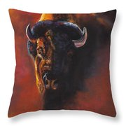 Basking In The Evening Glow Throw Pillow by Frances Marino