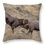 Battering Rams Throw Pillow
