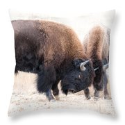 Battle Of The Bison In Rut Throw Pillow