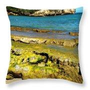 Beach At Dominican Republic Throw Pillow