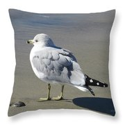 Beach Bum Photograph Throw Pillow