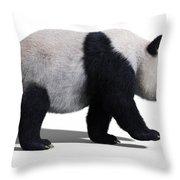 Bear Panda Walking Throw Pillow