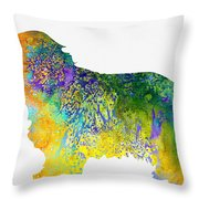 Bearder Collie-colorful Throw Pillow