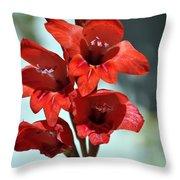 Beatiful Red  Throw Pillow