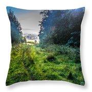 Beautiful Autumn 2 Throw Pillow