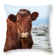 Beautiful Brown Cow On The Burren In Ireland Throw Pillow